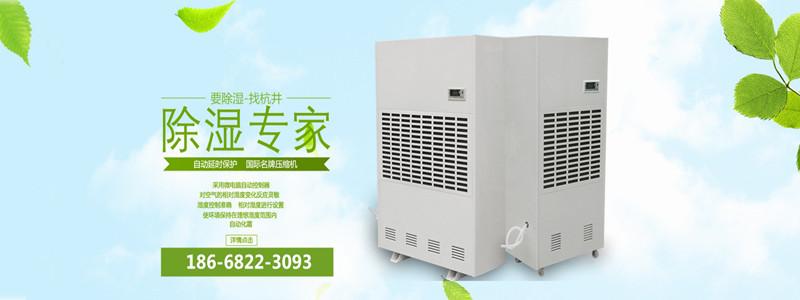 上海电子车间除湿机哪个牌子好?